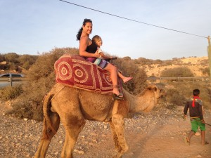 Camel Taxi in Morocco
